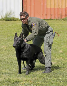 Police Officer working with K-9 trained dog.