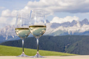 Quality Pinot Grigio from Alto Adige