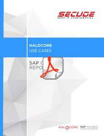 Download Halocore use case: SAP Crystal Reports