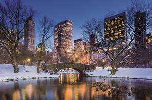 New York City Hotel Packages