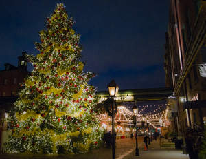 Toronto Distillery District Christmas Tree