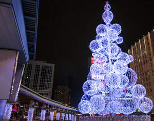 Toronto Dundas Square Christmas Tree
