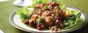 Pineapple Cranberry Holiday Salad