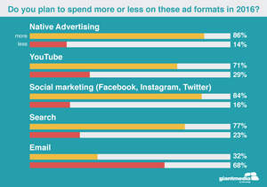 Do you plan to spend more or less from these ad formats in 2016?
