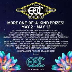 EDC Week Charity Auction Artist Experiences