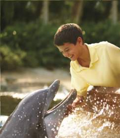 Seaworld hotel package