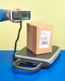 The Alliance/CAS PB Series Portable Bench Scale is lightweight and has a carrying handle with a disp