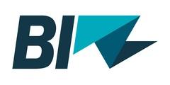 Biz Airlines