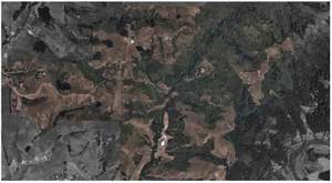 Here's a ranch seen through TerrAvion's natural color lens. Ranch managers can use the imagery to monitor vegetative health before and after grazing activity, and keep a close eye on what is happening in almost real time.