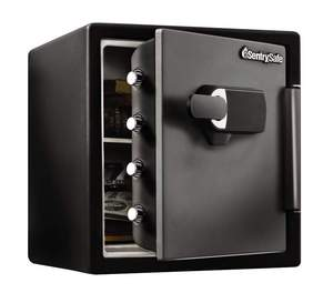 SentrySafe Fire Safe with Alarm  (SFW123TSC)