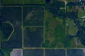 aerial imaging for agriculture