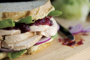 Turkey Sandwich with Cranberry and Hummus