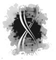DNA Brands
