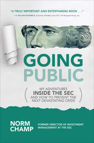 An insider's look at the SEC and the changes needed to strengthen the U.S. financial system.