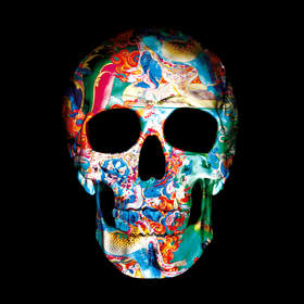 9 Dimensions of the Skull II   Limited Gold Edition of only 79