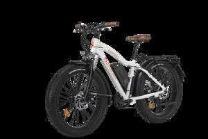 RadRhino Electric Fat Bike